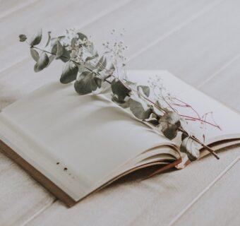 Tagebuch schreiben – #keepadiary (Teil II)