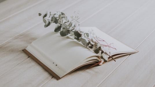 Tagebuch Schreiben – So gelingt dein Einstieg (Teil II)